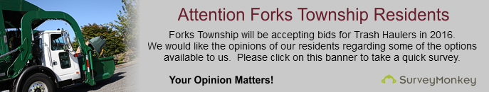 Forks Township Survey